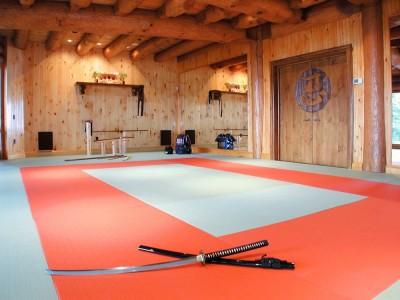 Competition style dojo martial arts studio