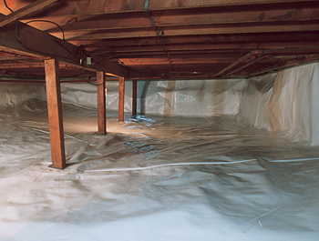 clean-crawl-space